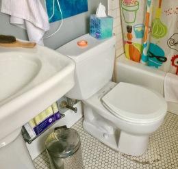 New toilet. Ok, not an amazing change.